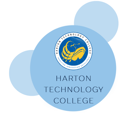 Carmel Teacher Training Partnership Harton Technology College